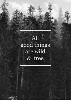 Todas las cosas buenas son salvajes y libres.