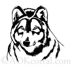 Wolf Patterns; Woodburning, Painting, Crafts