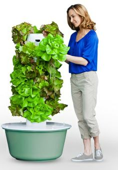 https://www.towergarden.com/ $525 grow fruit/veg/flowers quicker and on small space.