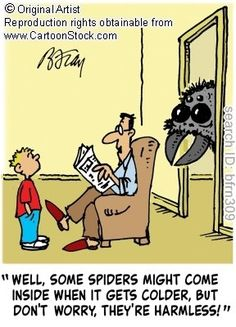 #Pests #PrecisePestControl