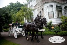 Classic & Romantic  A carriage ride at Historic Deepwood Estate in Salem, Oregon; Emily Hall Photography