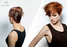 Color.id de Wella
