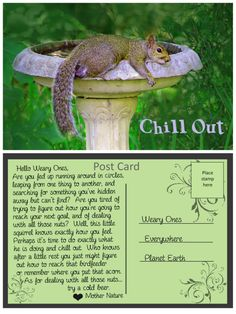 A Post Card from Mother Nature: Chill Out Tired Of Trying, Inspirational Message, Mother Nature, Chill, Cards, Done Trying, Maps, Playing Cards, Nature