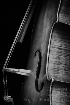 8 X 12 Black and White Fine Art Photography Print, Cello -repinned from Los Angeles photographer http://LinneaLenkus.com