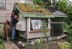 Seattle Chicken Coop and Urban Farm Tour + Tacoma Urban Chicken ...best coop ever!!