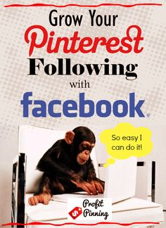 Gaining new followers on Pinterest can be achieved by using Facebook. It is SO simple! Get the top 5 pointers in this blog article!