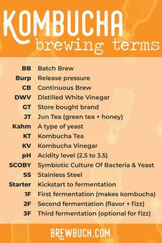 Confused by the terminology when it comes to home brewing? Here's our glossary of all things kombucha, including common acronyms and and terms. Kombucha Benefits, Kombucha Scoby, How To Brew Kombucha, Kombucha Brewing, Kombucha Flavors, Kombucha Recipe, Fermentation Recipes, Homebrew Recipes, Vegetarian Recipes Easy