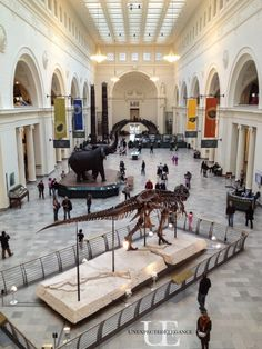 The Field Museum of Chicago is a great place to spend a day with the family!! #ChicagoWorldsFair