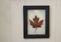 This floating, pressed leaf wall art project is quick and easy