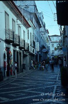 Cobblestone street, Ponta Delgada. Sao Miguel Island, Azores, Portugal, natural history stock photograph, photo id 05478