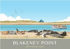 Blakeney Point Seal Trips Beans Boats, Norfolk