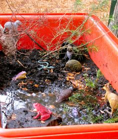 Irresistible Ideas for play based learning » Blog Archive » so we've had a little rain lately