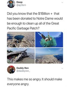 46 Pics and Memes and Everything Inbetween - Funny Gallery Psssst. hey kid, you wanna see a healthy dose of randomness? Save Our Earth, Save The Planet, The More You Know, Did You Know, Noter Dame, Great Pacific Garbage Patch, Amazing Animals, World Problems, Think