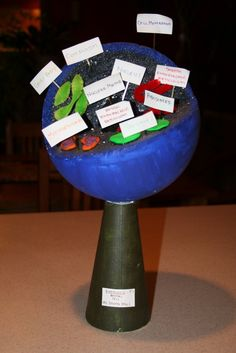 cell model made out of styrofoam ball | Animal Cell Styrofoam Ball Project How Make