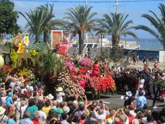 Fête des fleurs Madeira défilé  - Flower Festival, Festa da Flor, Funchal, Madeira Island, Portugal