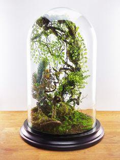 Terrarium forestiers de plantes artificielles Cabinet de