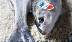 Bar Français disponible chez Reynaud à Rungis Fish, Bar, Budget, Seafood