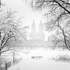 Fairy tale New York!  by Vivienne Gucwa