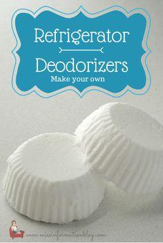 Homemade Fridge Deodorizers