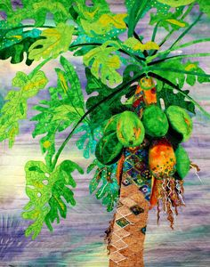 Colorful tropical papaya tree by Barb Alexander Schlagbaum  Great tree trunk