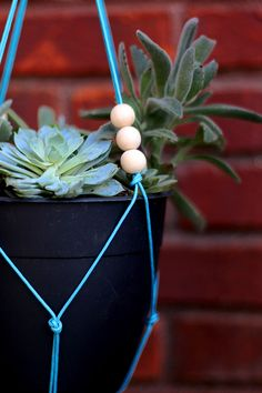 How to build a DIY hanging planter, via @jenwoodhouse
