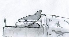 Sharks need love too