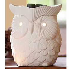 Wickless candles and scented fragrance wax for electric candle warmers and scented natural oils and diffusers. Shop for Scentsy Products Now! Owl Theme Classroom, Future Classroom, Classroom Ideas, Candle Warmer, Wax Warmers, My New Room, Candles, Make It Yourself, Stuff To Buy