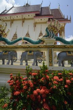 ASIA THAILAND ISAN AMNAT CHAROEN - The Tempel Wat Pak Saeng near Lakhon Pheng on the Mekong River in the Provinz Amnat Charoen in the northwest of Ubon Ratchathani in the Region of Isan in Northeast Thailand in Thailand.
