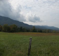 i took this in cades cove Tennessee. Beautiful scenery