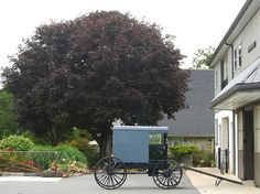 The Amish Country - Lancaster County, Pennsylvania | Flickr - Photo Sharing!