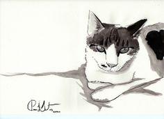 my cat, Ramsés!