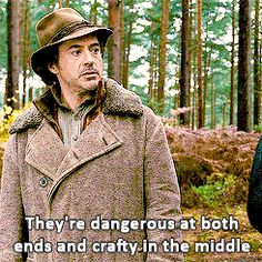 Oh my goodness this was like my favorite line in the movie (Sherlock's view on horses)