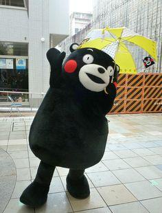 くまモン(熊本県) Kumamon, Kumamoto