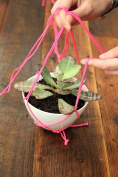 DIY Hanging Planter by refinery29: Great for gifting. #DIY #Hanging_Planter #Gifting