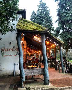 Hollyhock Cafe: The Fairytale Cafe Hiding Away In Richmond Mayfair Restaurants, Gazebo, Pergola, Bucketlist Ideas, London Cafe, Cafe Me, Richmond Park, Organic Wine, Mini Fairy Garden