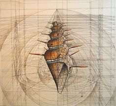Obras de Rafael Araujo Math Art, Science Art, Shell, Hand Sketch, Sketch Inspiration, Art For Art Sake, Patterns In Nature, Sculpture, Geometric Art