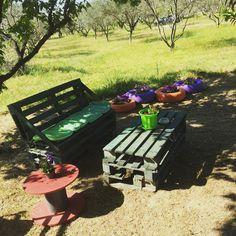 Pallet creations. My garden!!