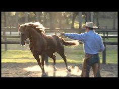 Some awesome footage of Pat Parelli playing with horses! There isn't anything you can't do when your horse becomes a part of you! www.Parelli.com