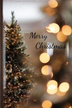Merry Christmas Merry Christmas Gift ideas: Christmas is coming Christmas or the Christ event, the Event of lights, the Party of peace, . Merry Christmas Wallpaper, Merry Christmas Images, Merry Christmas Wishes, Holiday Wallpaper, Winter Wallpaper, Christmas Greetings, Christmas Cards, Christmas Decorations, Preppy Christmas