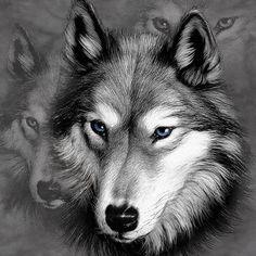 【摩達客】預購-The Mountain 野狼像 T恤-(男)網 - 服飾 -| ETMall東森購物網