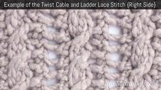 Exam[ple of the Twist Cable and Ladder Lace Stitch. (Right Side)