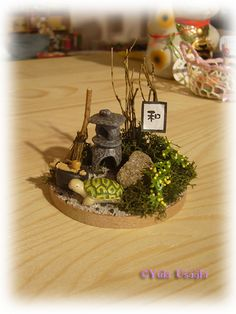 Mini Japanese Garden * by Conigliodineve, via Flickr