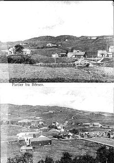 Sør-Trøndelag fylke Skaun kommune Børsa Partier fra Börsen Utg A/S. Stavgr. Forenede Fotografer tidlig 1900-tallet