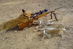 fox hunting banned - Ecosia