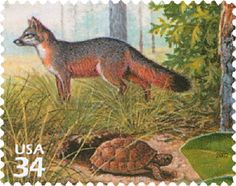 2002 34c Gray Fox, Gopher Tortise s/a for sale at Mystic Stamp Company