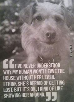 Awesome quote #doggylove