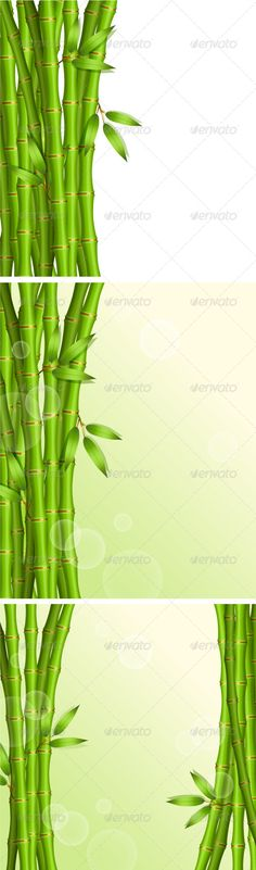 Background with Green Bambo  #GraphicRiver         Vector illustration of Background with green bamboo     Created: 30August13 GraphicsFilesIncluded: VectorEPS Layered: No MinimumAdobeCSVersion: CS Tags: abstract #art #asia #asian #background #bamboo #branches #chinese #clip #culture #design #graphic #green #growth #illustration #image #japan #japanese #leaf #lucky #nature #nobody #painting #pattern #plant #silhouette #style #tree #vector #vertical