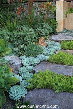 Bahçelerimiz için peysaj örnekleri http://www.canimanne.com/bahcelerimiz-icin-peysaj-ornekleri.html
