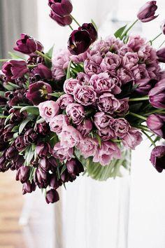 5 Tipps für unifarbene Blumendeko | Friedatheres.com  purple wedding  Floral Design, Styling & Fotos: TML | TABEA MARIA-LISA Rentals (Stühle und Tischwäsche): OPTIONS Location: Hotel Atlantis by Giardino