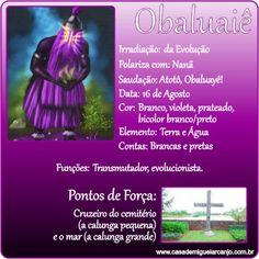 Infográfico_Obaluaiê_Dados-Gerais